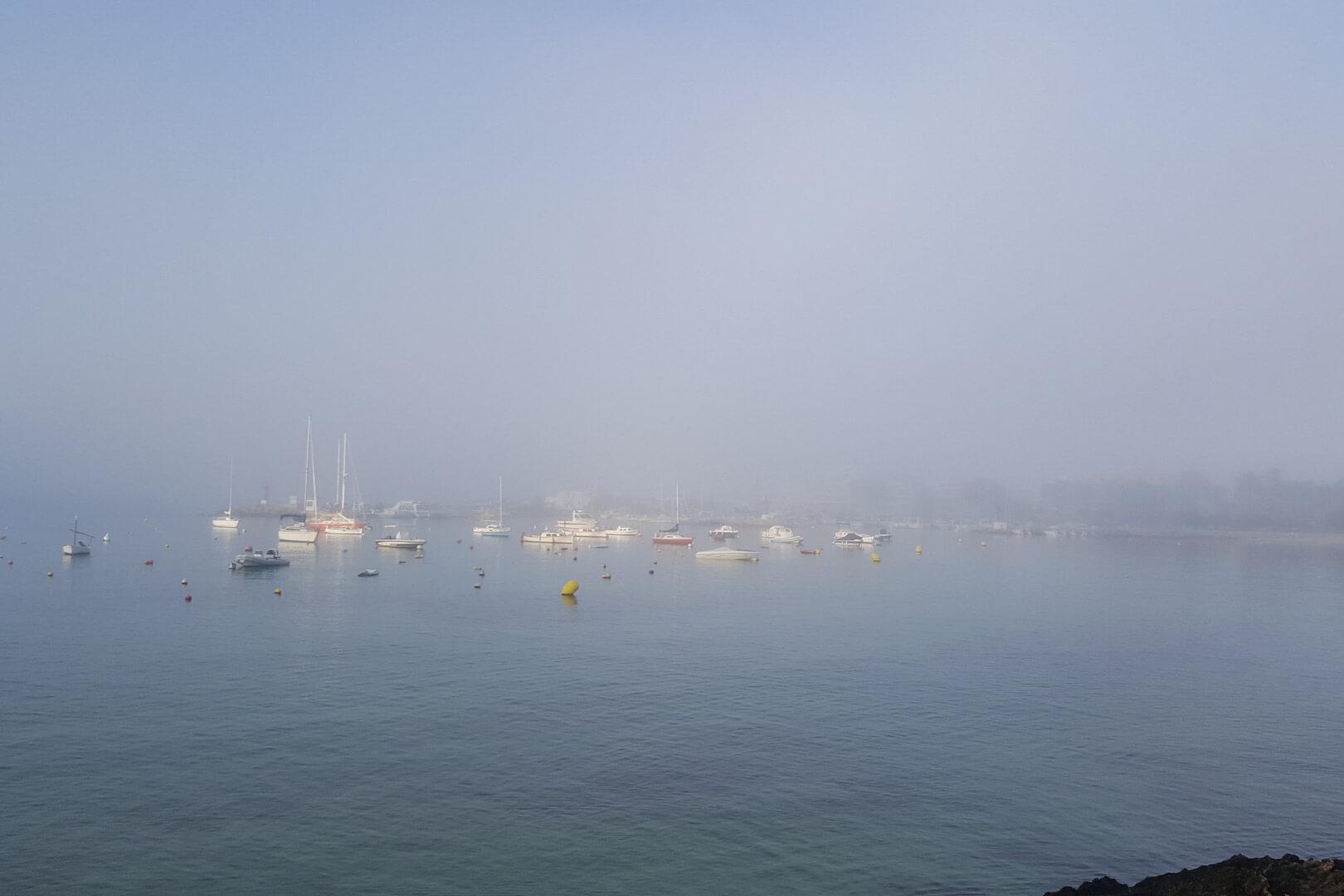 Morgendlicher Nebel im Hafen