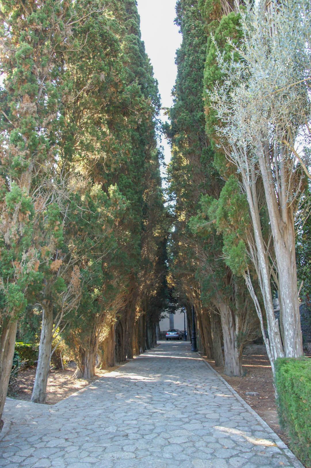 Garten Kartause