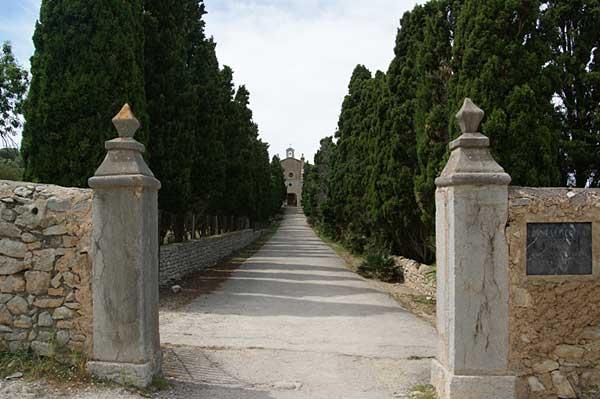 Grüne Allee zur Ermita