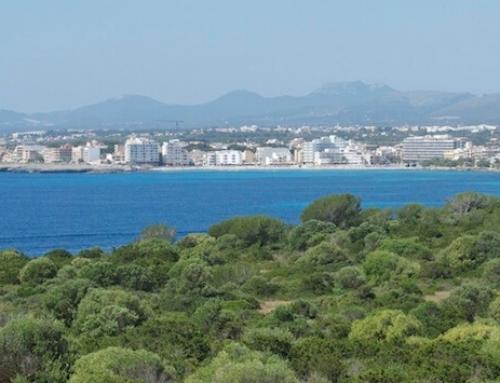 Cala Millor – den Nordosten entdecken