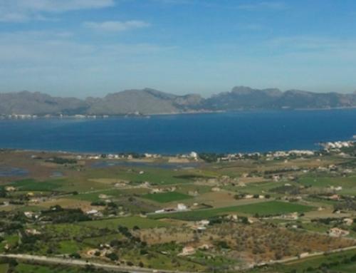 S´Albufera Nationalpark im Norden Mallorcas