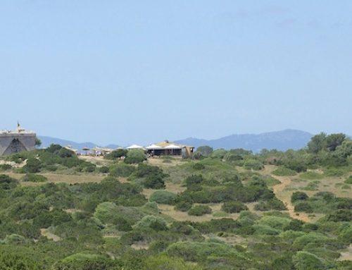 Castell de N´Amer Mallorca – Tagesausflug von Sa Coma
