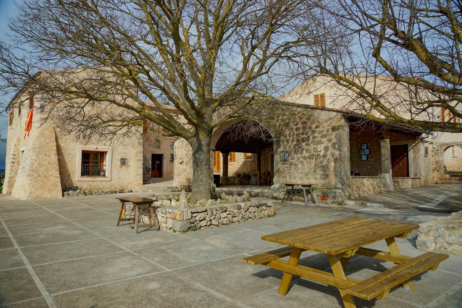 Bar auf dem Castell Alaro