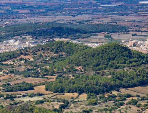 Felanitx im Südosten von Mallorca