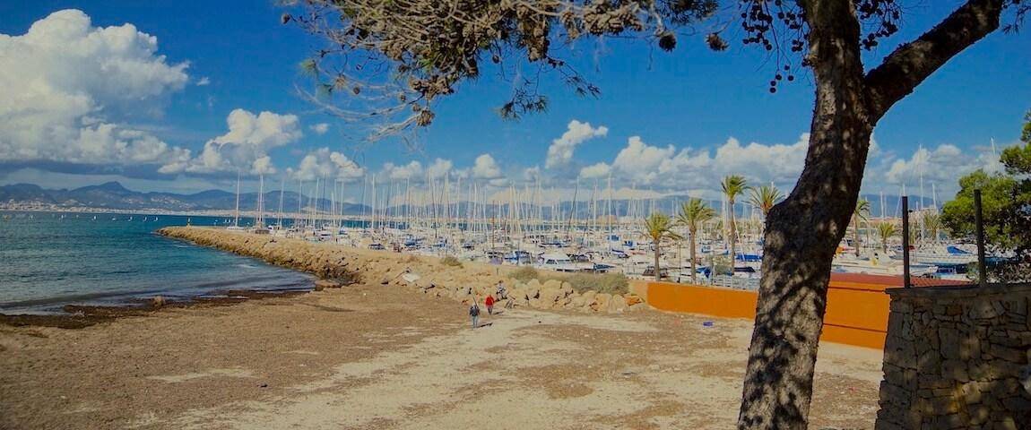 Hafen El Arenal