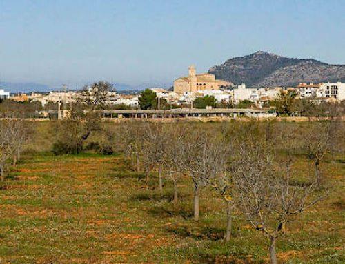 Llucmajor auf Mallorca – ursprünglich & authentisch
