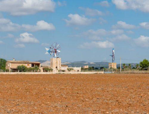 Campos auf Mallorca – Ein Ort im Zeichen der Ruhe und Stille