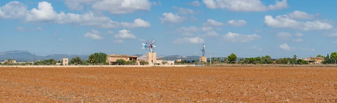 Campos Mallorca